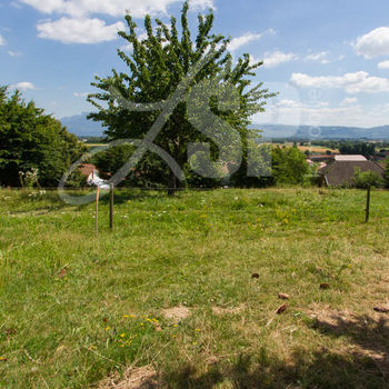 Terrain viabilisé (Lot C) : Colombe