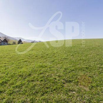 Terrain viabilisé (Lot N°2) : Montagnole