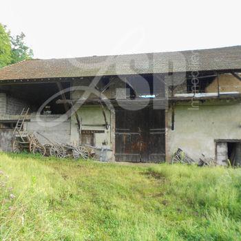 Grange rénovée + dépendance : Grange Apprieu