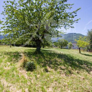 Terrain viabilisé (Lot 2) : Montagnole